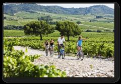 routes des vins