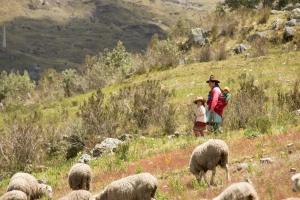 Province de Huari - credits Carlos Ly SUCO - Allpa